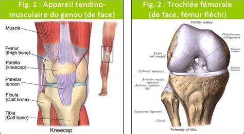 course 224 pied douleur rotule ou genou plus