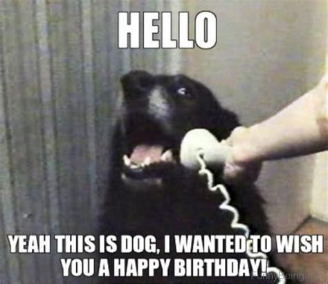 Happy Birthday Dog Meme - 48 amazing birthday memes