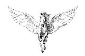 pegasus design 40 pegasus designs