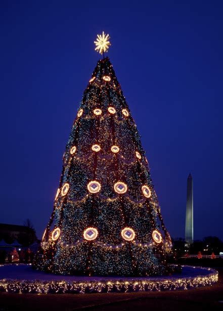 visiting national christmas tree at night usa national tree free stock photo domain pictures