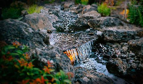 Water Features | Newport Ave Landscaping