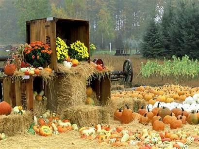 Harvest Fall Desktop Backgrounds Autumn Farm Wallpapers