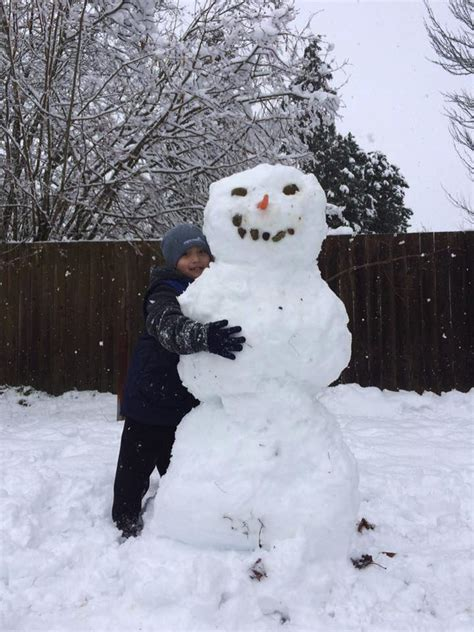 Snow in Seattle: Readers share their photos from around