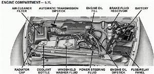 Wiring Diagram 2005 Dodge Ram 1500