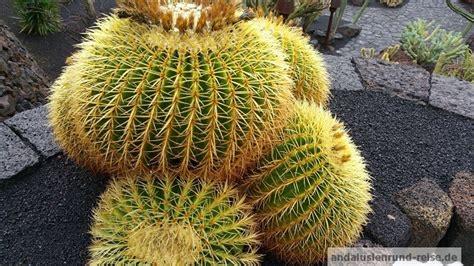 Botanischer Garten Malaga by Botanischer Garten Malaga Andalusien Rundreise