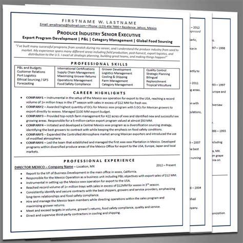 Executive Resume Page Length by Executive Resume Joe Pro Resumes