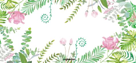 Border Background Hd by Fresh And Beautiful Floral Border Background Material Hd