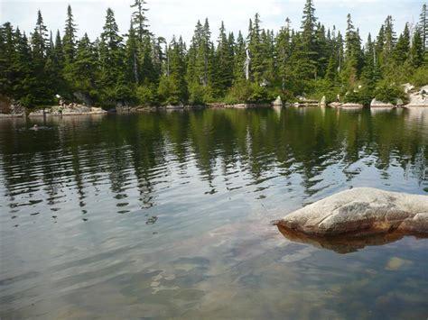 lake cabin sam lake theagill lake and cabin lake on cypress