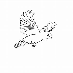 Bird Coloring Pages | Coloring Kids