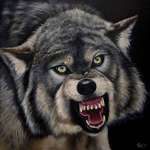 Pin Pin Angry Wolf Tattoos Page 4 On Pinterest on Pinterest