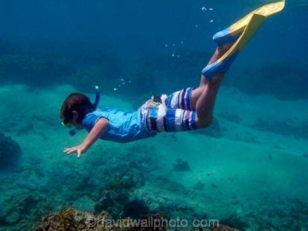 Boy snorkeling, Crusoes Retreat, Coral Coast, Viti Levu ...