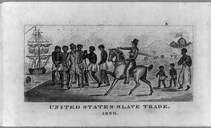 Cotton in a Global Economy: Mississippi (1800-1860 ...