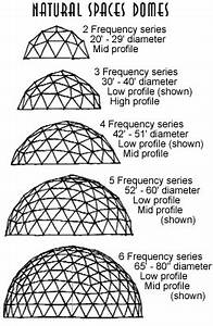 Shell Types - Natural Spaces Domes