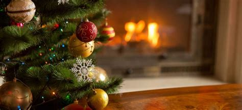 o tree taking care of your trees during the holidays premier tree solutions