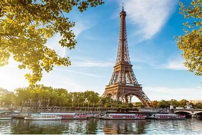 Paris Tower Eiffel Seine Famous Monument Cat