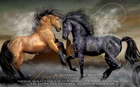 spiritual horse quotes quotesgram