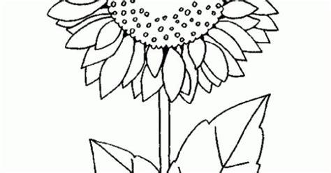dibujo de girasol dibujo infantil  colorear de