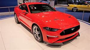 2019 Ford Mustang Gt500 For Sale Review Cars - New Cars Review
