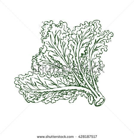 green leafy vegetables clipart black  white