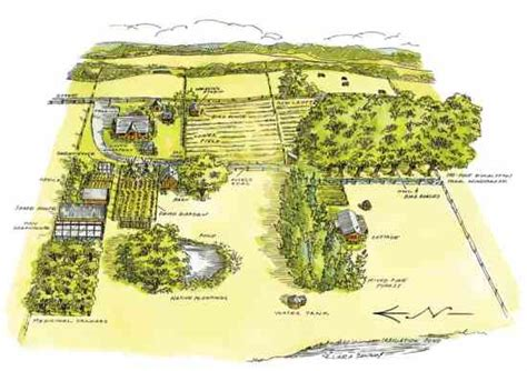 alf img showing gt medicinal herb garden design
