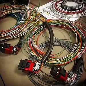 Wiring  U22c6 Fischer Motorsports