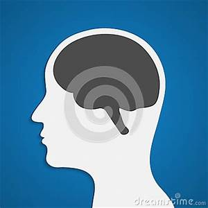 Silhouette Of A Human Head With Brain. Stock Vector ...