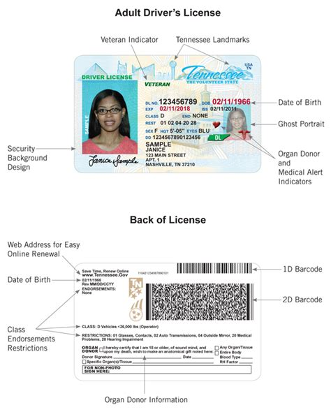 23 Images Of Indiana Operator License Template