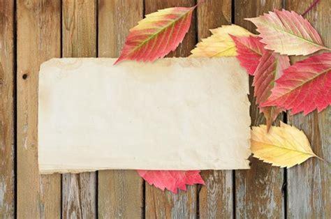 papier selber machen basteln mit kindern geolino