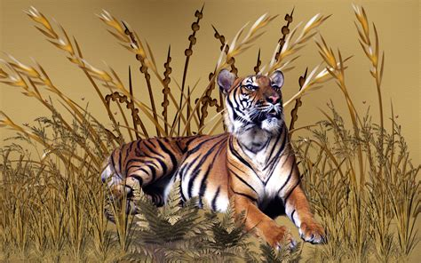Golden Tiger Wallpaper