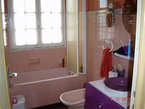 Fenetre Dans Douche : retirer baignoire et bidet pour une cabine de douche ~ Melissatoandfro.com Idées de Décoration