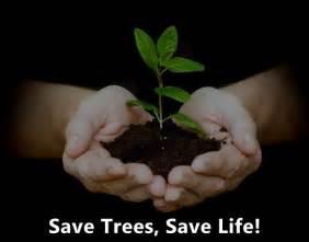 Slogans On Save Trees