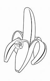 Coloring Banana Fruits Fruit Tropical Printables Wuppsy Tree Printable Drawing sketch template