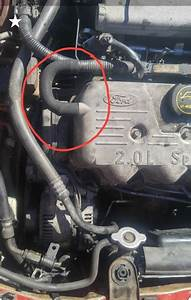 Ford Escort Questions - 99 Escort Se Engine Help