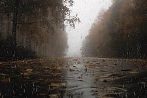 Short essay on monsoon season