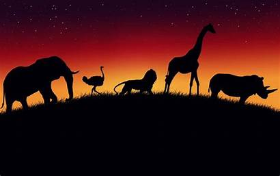 Safari Wildlife Wallpapers African Zoo Animals Animal