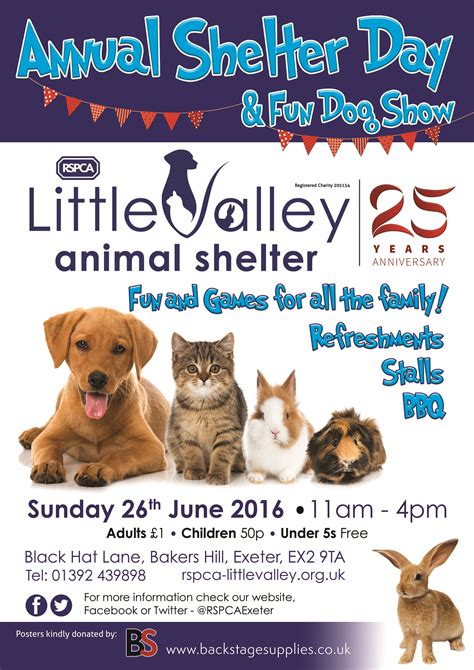 rspca shelter day  exeter daily