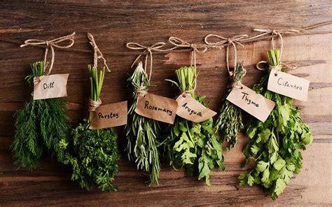 les herbes aromatiques de l automne