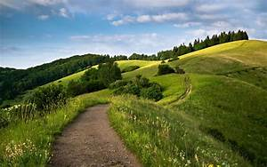 Awesome Hills Footh Path Trees wallpapers