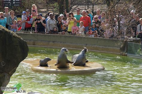 foto galerie  zoo berlin freizeitpark weltde
