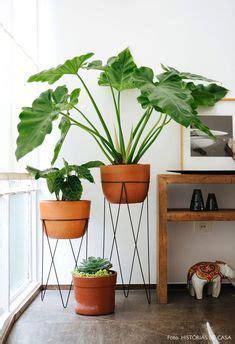 split leaf philodendron monstera deliciosa interiors plant life plants artificial