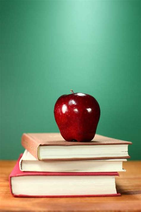 conroe isd seeking input school calendar woodlands
