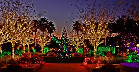 immortal fitness 15 places to see christmas lights in the