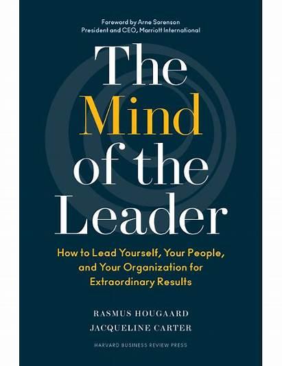 Leader Mind Web Equation Lead