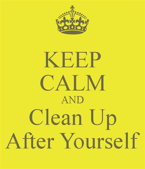 Clean Up Behind Yourself Quotes