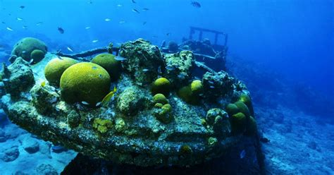 curacao scuba diving