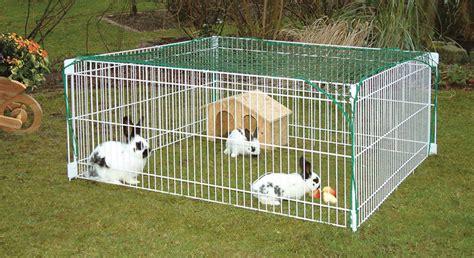 cage pour lapins