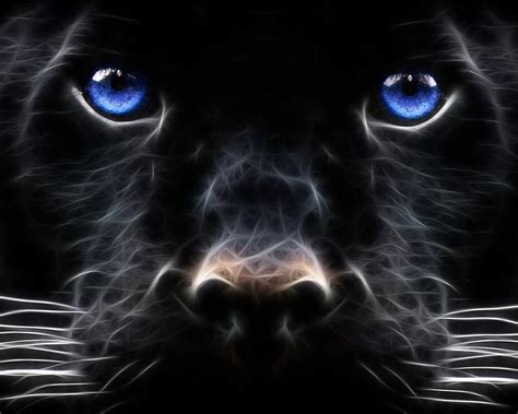 Epic Animal Wallpapers - epic animal wallpapers 56
