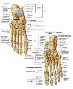 Лекарство от боли в суставах рук и ног причины