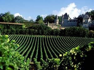 Partez à la découverte des presitigieux vignobles de Bordeaux Boutique Hôtel Bordeaux