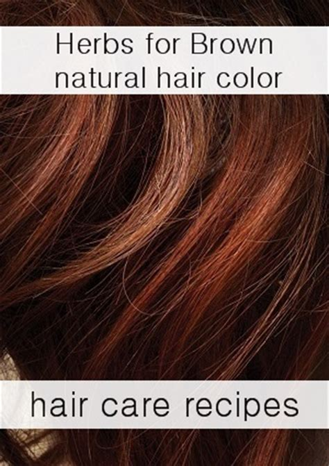 herbs  dye hair naturally brown